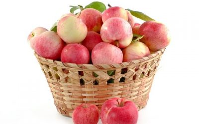 Rekszek jelentősége zöldség és gyümölcs raktározás során